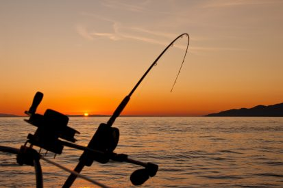 Difference In Sea Fishing Rods
